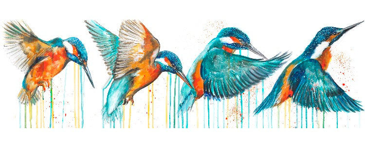 DAMAGED Limited Edition PRINT – IN FLIGHT (Kingfisher)