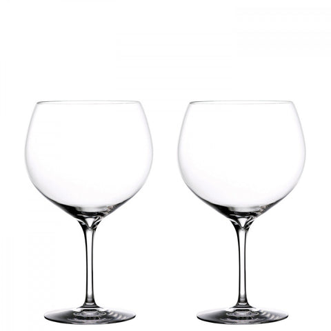 Elegance Gin Balloon Glass (Set of 2) by Waterford