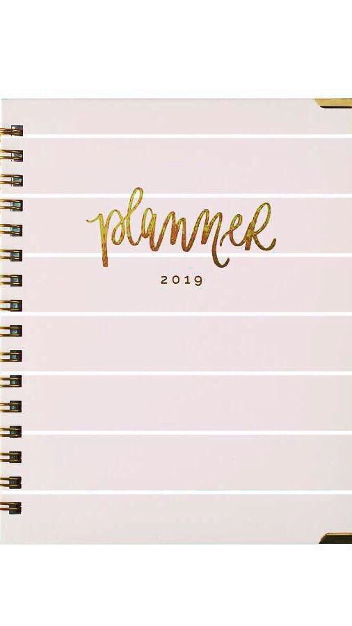 2019 pink and white striped planner