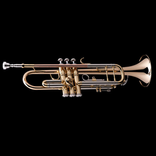 An image of a Bb Professional Trumpet from Wessex Tubas, facing right
