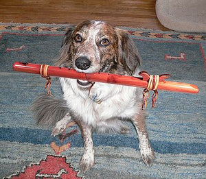 Native American Flute Dog at flutesonline.com