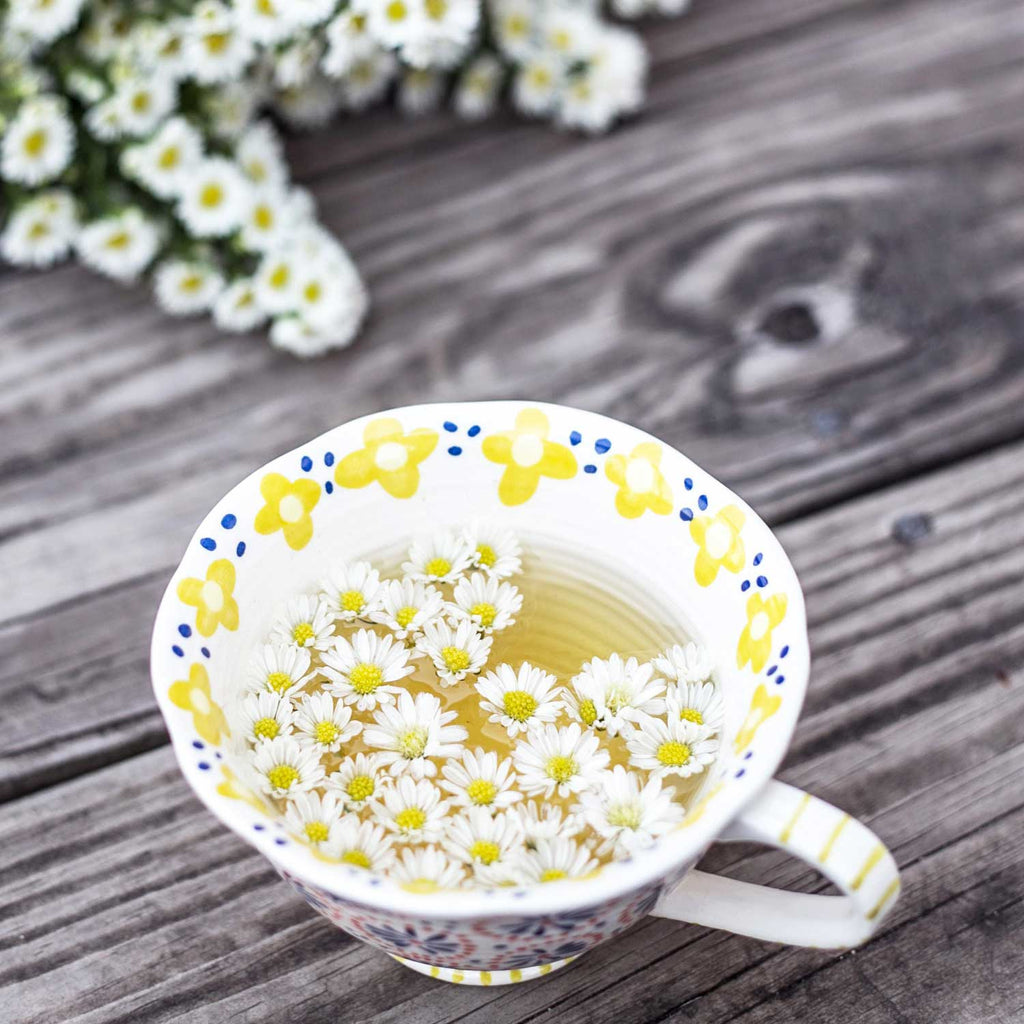 Chamomile Tea Healing Herbs to Help you Detox, Cleanse and Heal during our fast