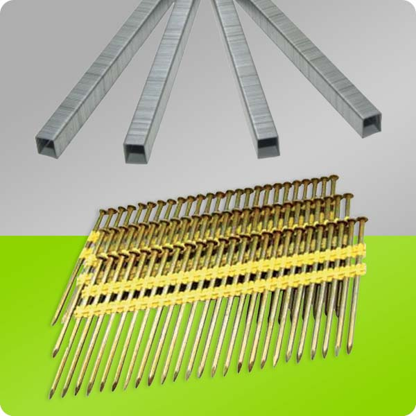 Pneumatic Staples & Nails