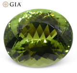 Master Cut 9.30ct Oval Mint Green Verdelite Tourmaline, GIA Certified