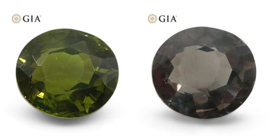 1.06ct Oval Alexandrite GIA Certified Sri Lanka Green to Brown - Skyjems Wholesale Gemstones