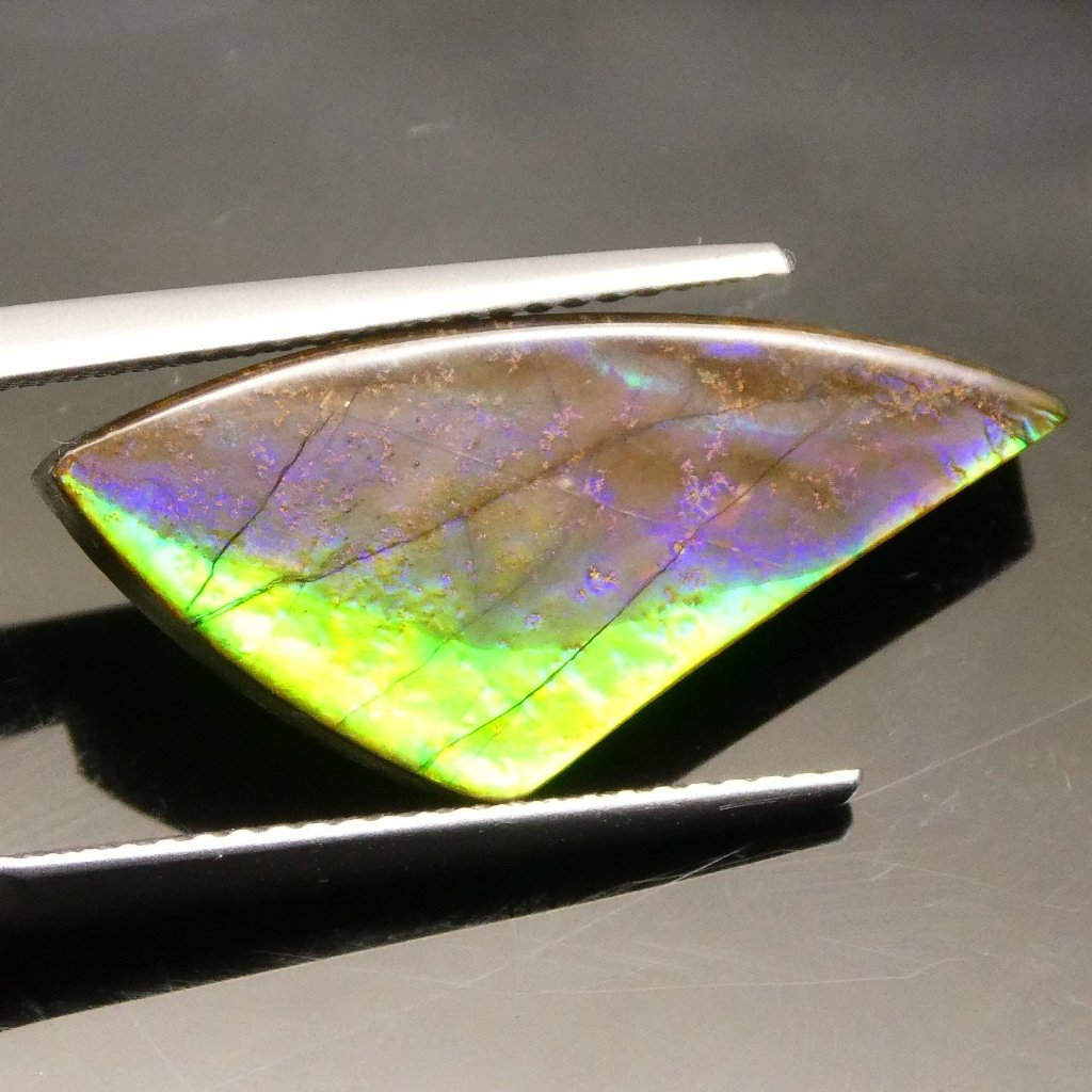 6.91 ct Freeform Tablet  Ammolite