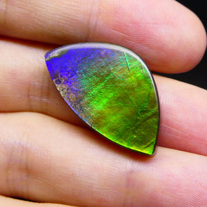 15.22 ct Freeform Tablet Ammolite