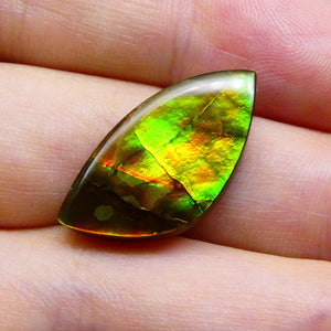 9.23 ct Freeform Tablet Riverbed Pattern Ammolite