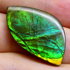 14.94 ct Freeform Tablet Riverbed Pattern Ammolite