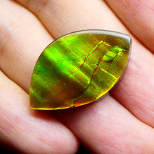 18.21 ct Freeform Tablet Riverbed Pattern Ammolite