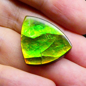 18.34 ct Freeform Tablet Riverbed Pattern Ammolite