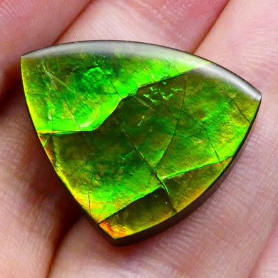 18.34 ct Freeform Tablet Riverbed Pattern Ammolite - Skyjems Wholesale Gemstones