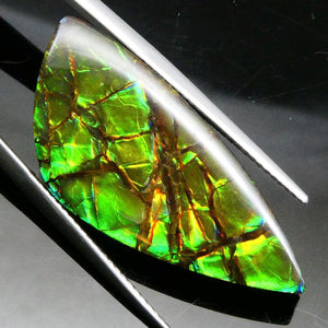 21.92 ct Freeform Tablet Brush Stroke Pattern Ammolite - Skyjems Wholesale Gemstones