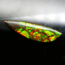 16.64 ct Freeform Tablet Dragon Skin Pattern Ammolite
