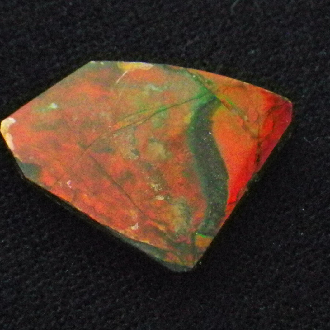 2.22 ct Green/Red Natural Ammolite/Ammonite Gemstone