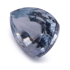 2.49 ct Shield / Trillion Aquamarine