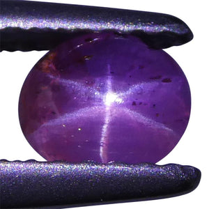 0.77ct Pink Star Sapphire Oval Cabochon - Skyjems Wholesale Gemstones