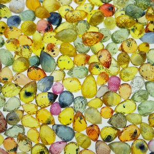 100cts Mix Assorted Briolette Sapphire - Skyjems Wholesale Gemstones