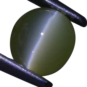 Cat's Eye Chrysoberyl 0.92 cts 5.45x5.12x3.35mm Oval Cabochon Yellow  $300