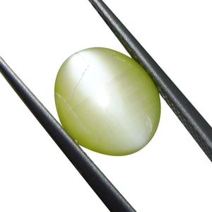 4.26 ct Oval Chrysoberyl Cat's Eye - Skyjems Wholesale Gemstones