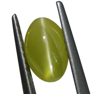 1.82 ct Oval Chrysoberyl Cat's Eye - Skyjems Wholesale Gemstones