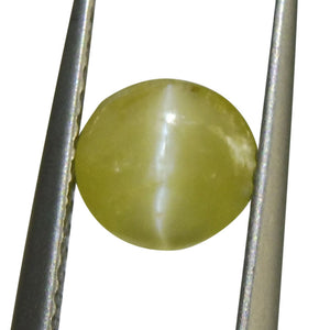 1.16 ct Oval Chrysoberyl Cat's Eye