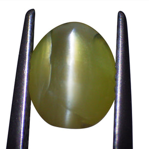 1.39 ct Oval Chrysoberyl Cat's Eye - Skyjems Wholesale Gemstones