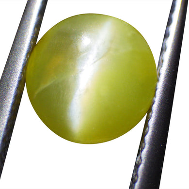 1.26 ct Oval Chrysoberyl Cat's Eye