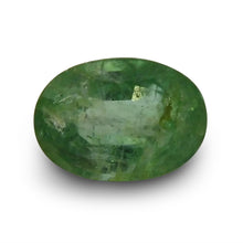 Emerald 1.55 cts  Oval Green  $130