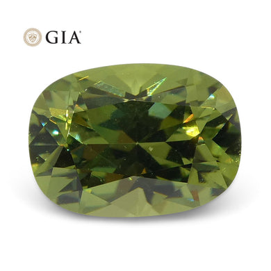 1.08ct Cushion Demantoid Garnet GIA Certified - Skyjems Wholesale Gemstones