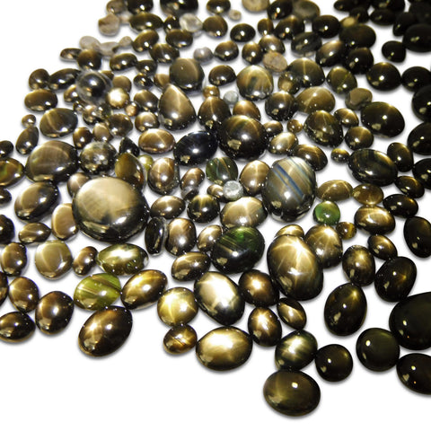 402.70 cts Black Star Sapphire Wholesale Lot