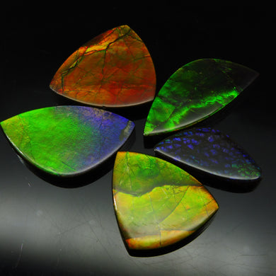 Ammolite 74.07 cts 5 stones Wholesale Lot