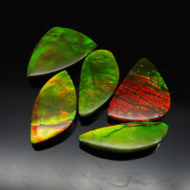 Ammolite 45.32 cts 5 stones Wholesale Lot