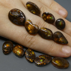 93.43ct Mexican Fire Agate Freeform Wholesale Lot