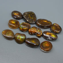 87.27ct Mexican Fire Agate Freeform Wholesale Lot