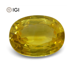 2.79 ct Yellow Sapphire Oval IGI Certified Sri Lankan - Skyjems Wholesale Gemstones