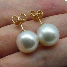 12mm White South Sea Pearl Earrings in 14kt Yellow Gold