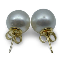 9mm White South Sea Pearl Earrings in 14kt Yellow Gold