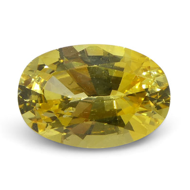 Yellow Sapphire 1.69 cts 8.49x5.85x4.06mm Oval Yellow  $430