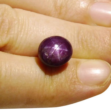 8.3 ct Oval Star Ruby
