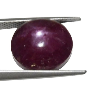 12.11 ct Oval Star Ruby