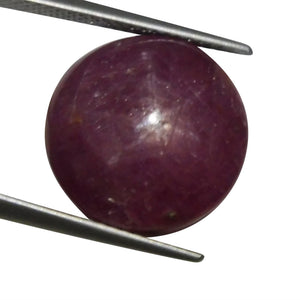23.24 ct Round Star Ruby