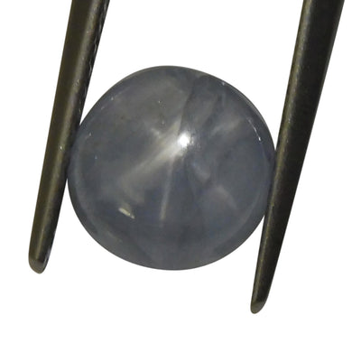 3.10 ct Oval Star Sapphire - Skyjems Wholesale Gemstones