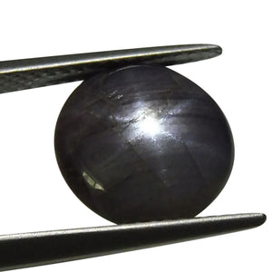 6.40 ct Round Star Sapphire - Skyjems Wholesale Gemstones