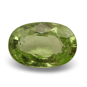 Tsavorite Garnet 3.18 cts 10.93x7.28x4.48mm Oval Slightly Yellowish Green  $570
