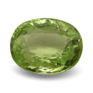 2.67 ct Oval Green Grossularite / Tsavorite Garnet - Skyjems Wholesale Gemstones