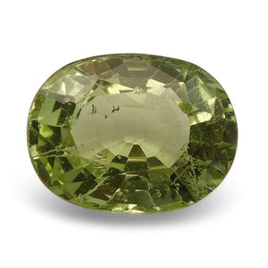 3.38 ct Oval Green Grossularite / Tsavorite Garnet - Skyjems Wholesale Gemstones