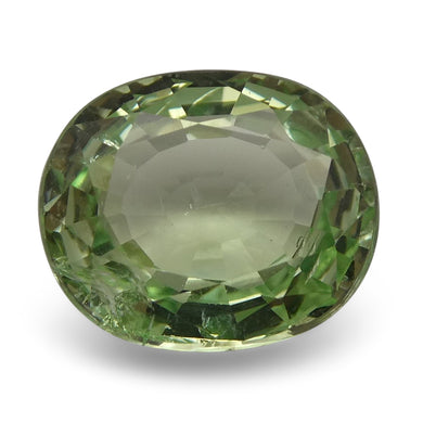 2.43 ct Oval Green Grossularite / Tsavorite Garnet - Skyjems Wholesale Gemstones