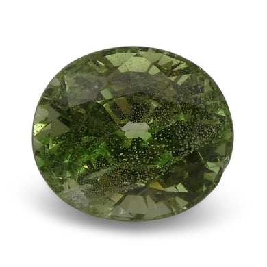 2.82 ct Oval Green Grossularite / Tsavorite Garnet - Skyjems Wholesale Gemstones