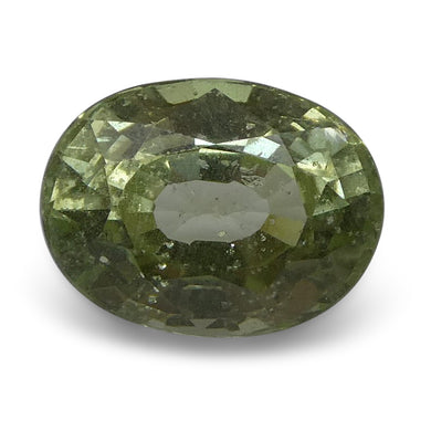 Tsavorite Garnet 3.16 cts 9.48x7.22x5.57mm Oval Slightly Yellowish Green  $250